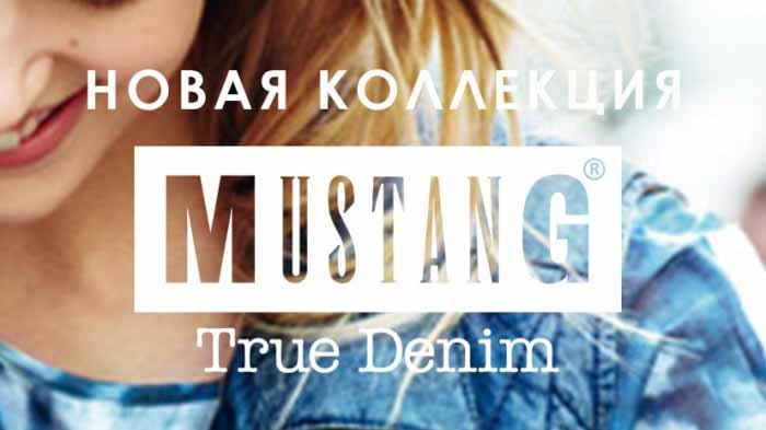 Банер-Mustang-700x4491